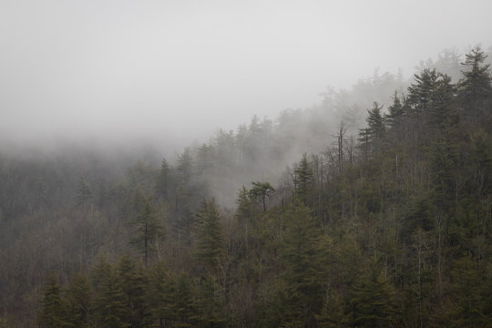 Foggy Ridgeline in Linville Gorge