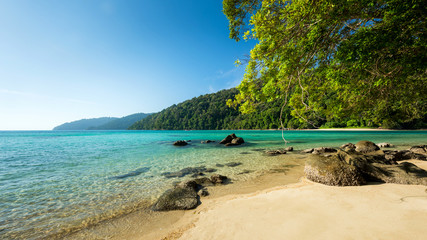 Wall Mural - The paradise beach for relaxation with wonderful daylight in summer located Surin island, Thailand, Breathtaking remote beach no people and quiet