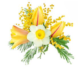 Poster Narcisse Mimosa, narcissus and yellow tulips flowers bunch isolated on white background