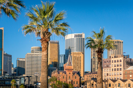 Modern cityscape skyline with skyscrapers and historic buildings with palm trees