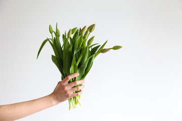 Conceptual image of a woman holding spring flowers as present for international women's day. Close up, copy space, background.