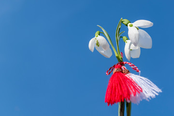 Snowdrops and martenitsa and blue sky background. March 1 tradition white and red cord martisor. Cheerful concept of the beginning of spring. Bulgarian holiday of Baba Marta. Copy space.