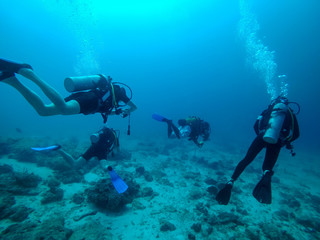 Scuba divers under water. Bubbles, blue water, Zanzibar
