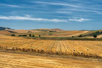 Rural landscape in Apulia at summer