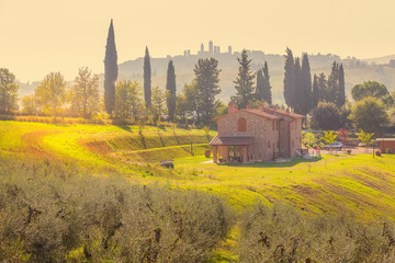 Türaufkleber Gelb Tuscany landscape with house, Italy