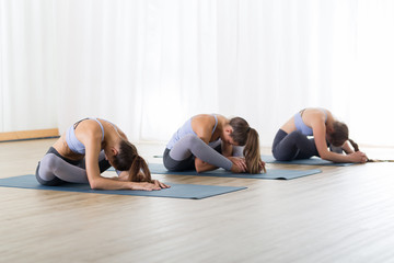Fotomurales - Group of young sporty attractive women in yoga studio, practicing yoga lesson with instructor, sitting on floor in forward bend yoga sana posture. Healthy active lifestyle, working out indoors in gym.
