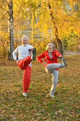 Beautiful caucasian senior couple in the park exercising