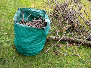 Baumpflege Baumschnitt im Garten Gartenabfälle