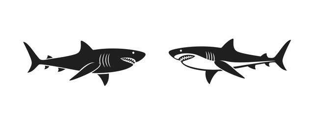 Shark logo. Isolated shark on white background
