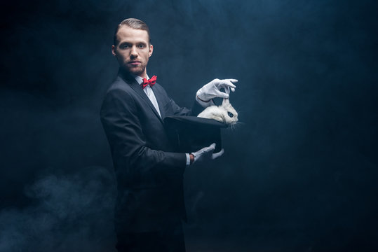 professional magician in suit showing trick with white rabbit in hat, dark room with smoke