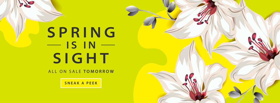 Spring sale horizontal web banner poster with lily flowers on pink and yellow background, vector illustration.