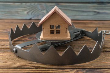 Big trap house! Security and alarm concept. Home protection