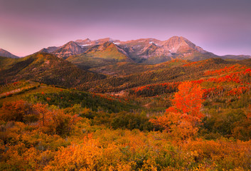 Door stickers Lavender Autumn sunrise in the Wasatch Mountains, Utah, USA.