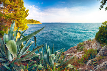 Beautiful sunset above Adriatic sea and coastline in Makarska.