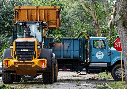 Backhoe picking up tree damage after storm and placing in dumptruck