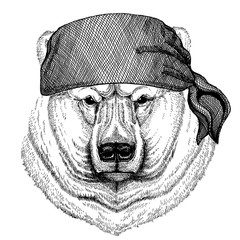 Polar bear. Wild animal wearing pirate bandana. Brave sailor. Hand drawn image for tattoo, emblem, badge, logo, patch