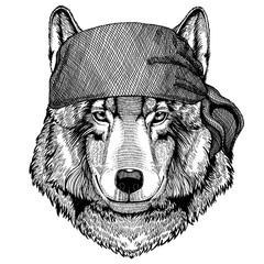 Wolf Wild animal wearing pirate bandana. Brave sailor. Hand drawn image for tattoo, emblem, badge, logo, patch