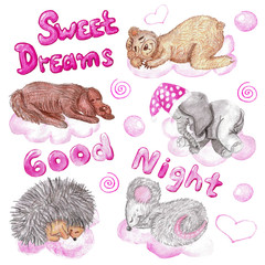 Set of watercolor hand drawn children illustrations with sleeping animals on pink clouds