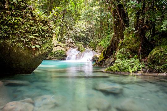 Tagesausflug: Abenteuer Fluss Wanderung unter den Reach Falls in Jamaica Portland