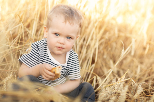 Portrait of little boy eating bread while sitting at wheat fields among golden spikes in summer day. Country life, calmness and summer relaxation, peace, environmental care and agriculture concept