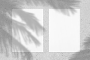 Two empty white vertical rectangle poster or business card mockups with with palm leaves shadows on soft grey concrete background. Flat lay, top view.