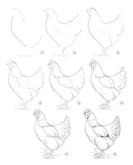 How to draw sketch of imaginary domestic hen. Creation step by step pencil drawing. Education for artists. Textbook for developing artistic skills. Hand-drawn vector on computer by graphic tablet.