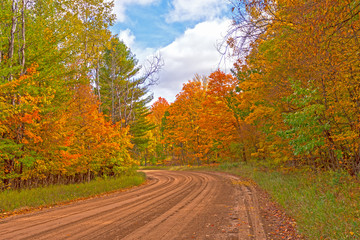 Rural Road in the Fall