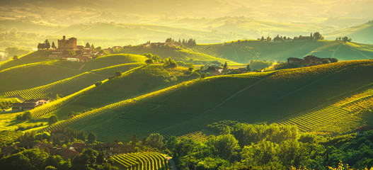 Canvas Prints Yellow Langhe vineyards sunset panorama, Grinzane Covour, Piedmont, Italy Europe.