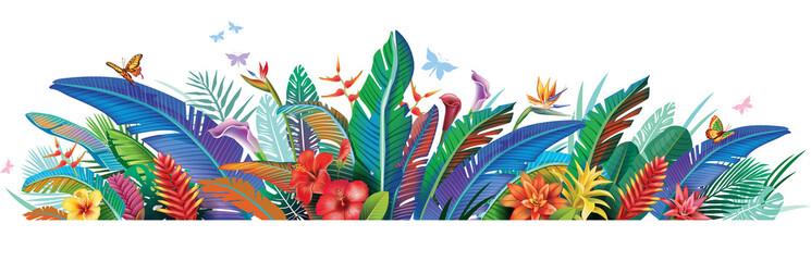 Fototapeta Border with tropical jungle plants flower obraz
