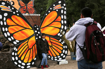 A man takes a picture of his daughter posing with a giant model of a monarch butterfly at El Rosario sanctuary for monarch butterflies in the western state of Michoacan, in Ocampo