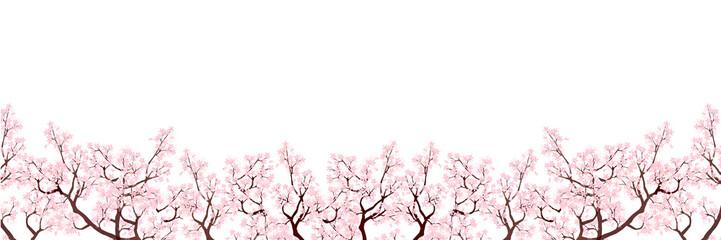 Tuinposter Hoogte schaal 桜 春 花 背景