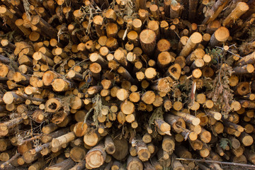 Door stickers Firewood texture pile of firewood