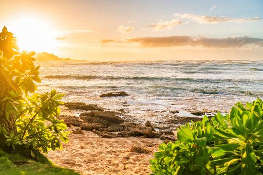 Hawaii beach landscape at sunset Oahu island Aloha summer travel destination.