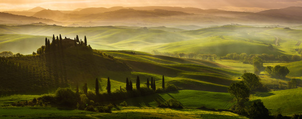 Foto op Aluminium Olijf Impressive spring landscape,view with cypresses and vineyards ,Tuscany,Italy