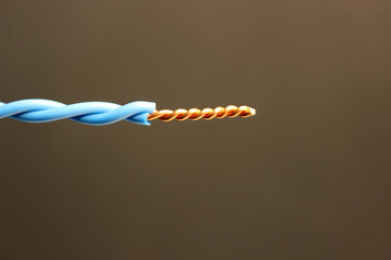 Twisting an electrical wire on an isolated background. Cable for electrical wiring. Simple connection method.