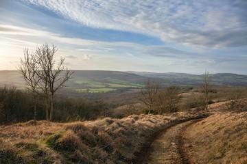 Longbarrow Bank near Brockhampton, looking towards Winchcombe, Cotswolds, Gloucestershire, England