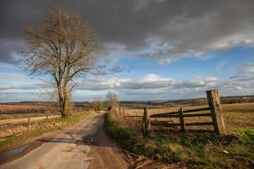 Cotswold lane near Winchcombe, Gloucestershire, England