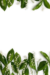 Wall Murals Lily of the valley Frame of flower with leaves Lily of the valley ( Convallaria majalis, May bells, may-lily ) on a white background with space for text. Top view, flat lay