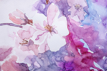 Closeup view of beautiful floral watercolor painting