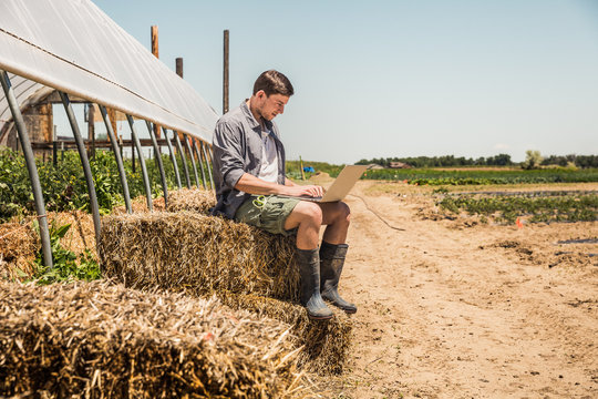 Young farmer in the fields with laptop, checking his crops. Laurel, Montana, USA