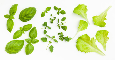 Fresh lettuce leaves, basil, oregano isolated on white background. Top view.