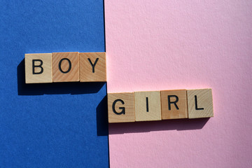 Boy, Girl, Words on blue and pink, creative concept of gender stereotypes
