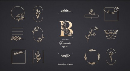 Set of minimalistic elegant geometric floral elements. Premade decorative fashion labels, signs