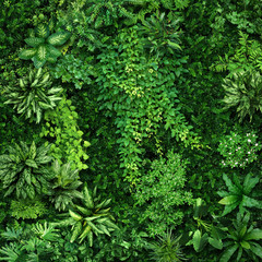 Vegetative background from leaves and plants. Lush, natural foliage. Green vegetation backdrop. Top...
