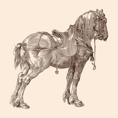 Horse with saddle and harness in vintage style on a beige background.