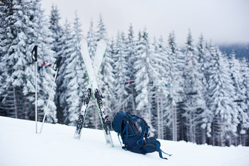 Tourist backpack, ski and poles laid out on snow on mountain descent. Snow-covered dense coniferous forest on background. Concept of promoting outdoors winter vacation and activities. Copy space.