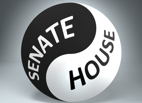 Senate and house in balance - pictured as words Senate, house and yin yang symbol, to show harmony between Senate and house, 3d illustration