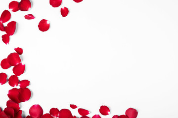 Valentine's day, Flowers round frame made of rose flowers on blue background, Valentines day background.