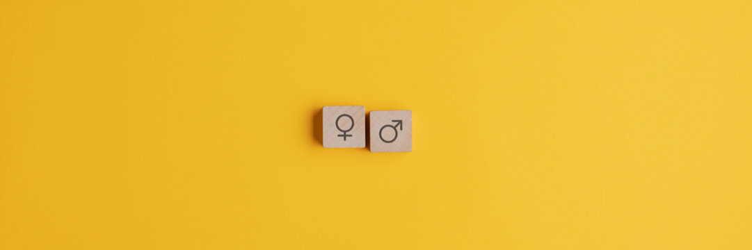 Male and female symbol on two wooden blocks