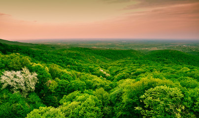 Wall Murals Green Panoramic view from Fruska Gora mountain in Vojvodina, Serbia